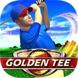 金牌高尔夫